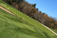 Chipping Green
